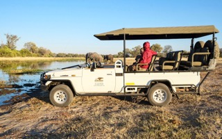 Game drive with guests, Safarin Embassy