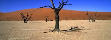 Namibia, desert