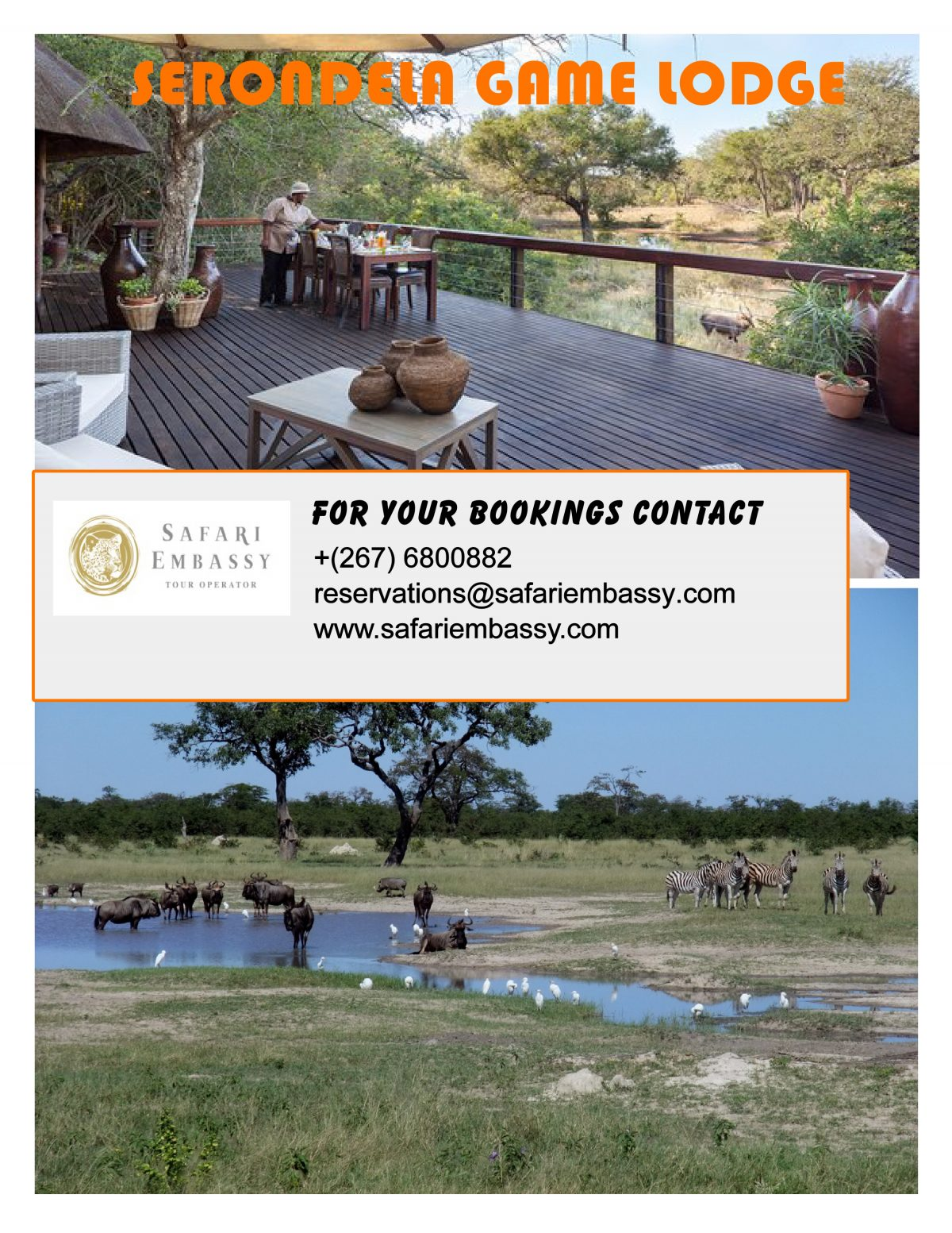 Travel to Botswana and have a wonderful safari with Safari Embassy at Serondela reserve.